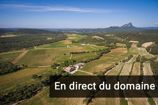 direct_domaine.jpg