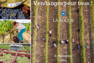 (Français) Vendanges pour tous !